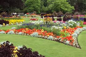 Small Picture Shining Flower Garden Ideas Imposing Design Images About