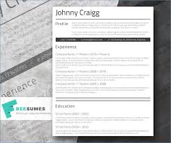 fancy resume templates free fancy resume templates ceciliaekici com