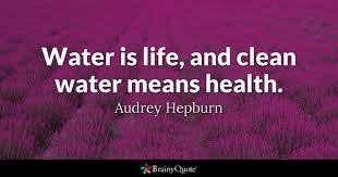 Water Quotes Stunning Water Quotes BrainyQuote