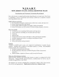 Veterinarian Resume Examples Examples Of Resumes