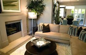 living room designs and decoration medium size gray and tan living room room decor tan walls