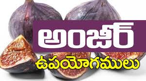 benefits of anjeer ii health benefits of figs anjeer in telugu anjeer for weight loss