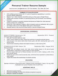 Professional Summary Resume Sample 53 Choices You Must Consider