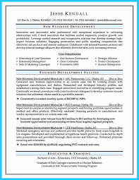 Business Development Manager Resume Samples 60 Impressive Executive Business Development Resume Sample Resume 51