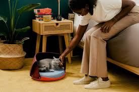 <b>Cat Person</b> | Food & goods for cats and the persons who love them
