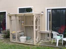 figure 8 constructed off back patio with screen door opening to kennel