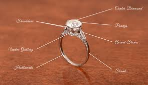 defining the anatomy of a ring