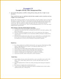 90 Day Business Plan Examples Day Sales Management Plan Example 30