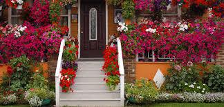 flowers for garden. Popular Flowers - Garden Outdoors U.S. Gardeners Poll Top 5 For A