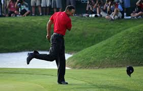 you won t believe how many diffe states tiger woods qualifies for the hall of fame in golf digest