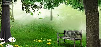background image nature.  Background Natural Forest Green Background In Background Image Nature