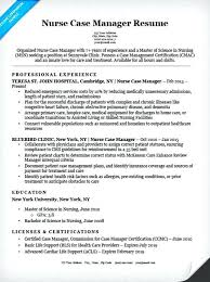 Resume Sample Doc India Project Manager Resume Sample Doc India Nurse Case  Companion Examples Restaurant
