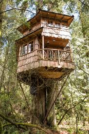 treehouse masters treehouse point. Burl Tree House Treehouse Masters Point U