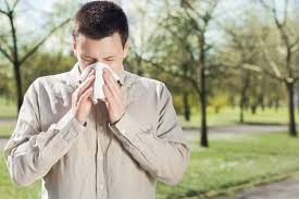 Sniffle Detective: 5 Ways to Tell Colds from Allergies