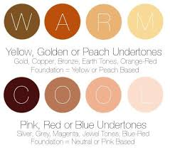 Mac Nc Color Chart Makeup For Warm Yellow Undertones Cool Skin Tone Hair