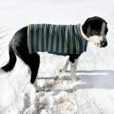 Dog Sweater Crochet Pattern Best Crochet Spot Blog Archive Crochet Pattern Easy Adjustable Dog