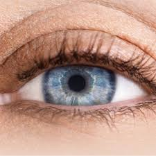Pics Of Eyes Eye Conditions Dry Eye Cataracts More Vision Express