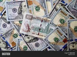 1000 Dirham Banknote Image & Photo (Free Trial)