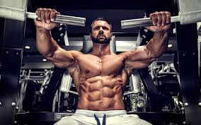 principles of muscle building