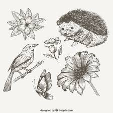 Sketches Animal Sketches Cute Animals And Flowers Vector Free Download