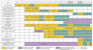 Blank Immunization Chart Immunization Chart Jasonkellyphoto Co