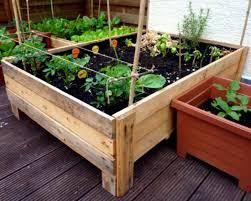 planter box 6