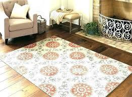threshold rug target area