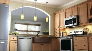 Remodeled Kitchens On A Budget Baovetoc Co