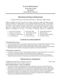 Real Estate Investor Resume Summary Resume Examples