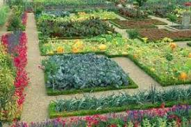 Small Picture Raised Bed Vegetable Garden Ideas Perfect Full Size Of Garden