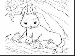 Small Picture Astounding Cute Baby Bunny Coloring Pages With Rabbit Best Of
