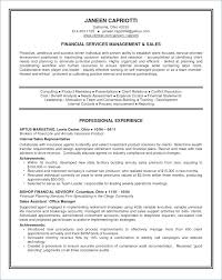 Examples Of Summaries For Resumes Resume Summary Examples Srhnf Info