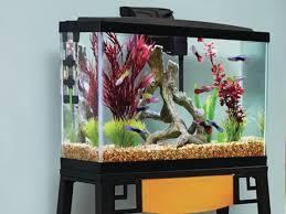 petco fish tanks. Fine Tanks FishTankheader2png Intended Petco Fish Tanks