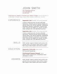 Standard Resume Template Inspiration Professional Resume Template Word Alive Standard Resume Formats