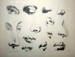 how to draw noses figure drawing how to draw eyes nose earouths