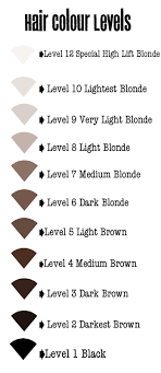 Level 5 Hair Color