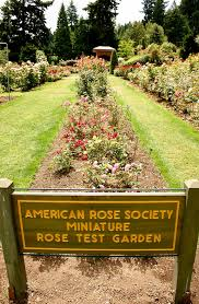 one of several gardens within the international rose test garden