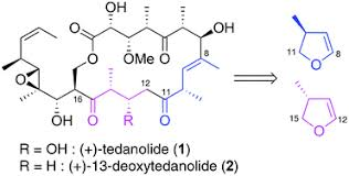 Directed studies towards the total synthesis of (+)-13 ...