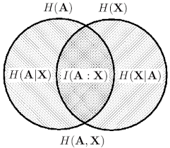 Quantum Venn Diagram Paradox Venn Diagram For Classical Information H A Is The Entropy
