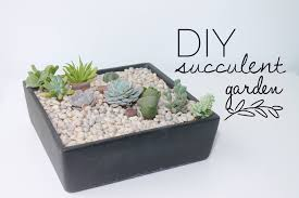 how to make a succulent garden. Exellent Succulent DIY Tutorial  How To Make A Succulent Garden Throughout YouTube