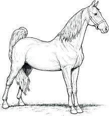 Horse Racing Coloring Pages Click To See Printable Version Of Race