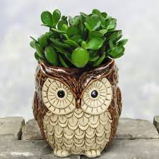 Small Picture 50 Owl Home Decor Items Every Owl Lover Should Have