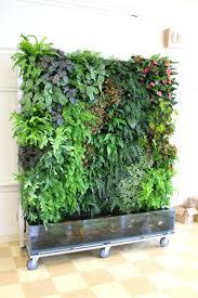 living wall planter verticl grden living wall planters outdoor indoor  living wall planter review outdoor living
