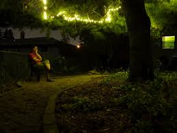 marvellous outdoor led string lights at green trees for garden lights installation design