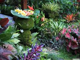 Small Picture wish my garden looked like this Buy some calladiums garden
