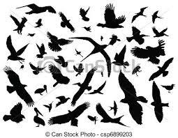 Image result for bird migration clipart