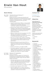 Executive Account Director It Resume samples