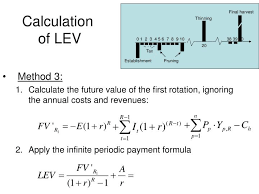 Periodic Payment Formula Ppt The Land Expectation Value And The Forest Value Powerpoint