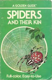 SPIDERS And Their Kin - A Golden Guide by Ana C. Ponticelli - issuu