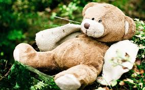 teddy bear toy theme photography wallpaper green gr wallpapers